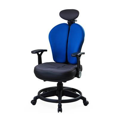 เก้าอี้เพื่อสุขภาพ น้ำเงิน เออร์โกเทรน Dual-07UFF