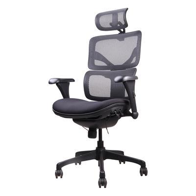 เก้าอี้เพื่อสุขภาพ ดำ เออร์โกเทรน Doom