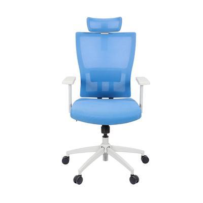 เก้าอี้สำนักงาน ฟ้า เฟอร์ราเดค PAIRIE
